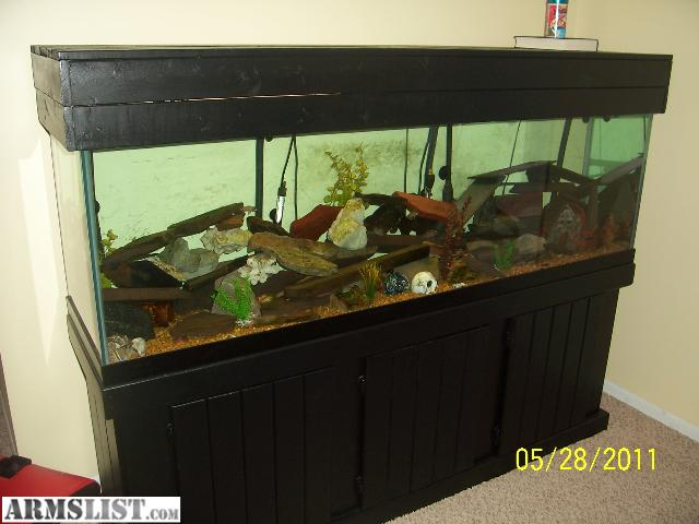 armslist for sale trade 125 gallon fish tank