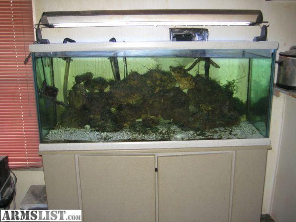 Armslist For Sale Trade 75 Gallon Saltwater Fish Tank