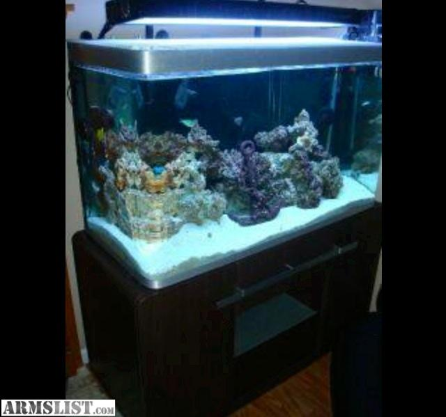 Fish tank movie 90 gallon sale 90 gallon 90 gallon reef for How to build an acrylic fish tank