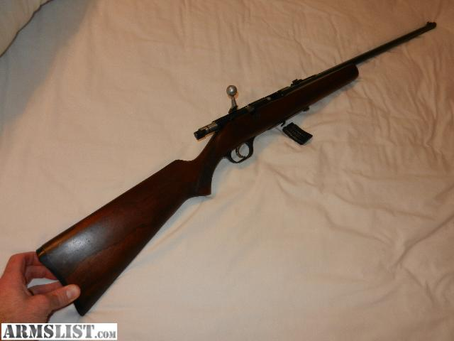 22 Long Rifle