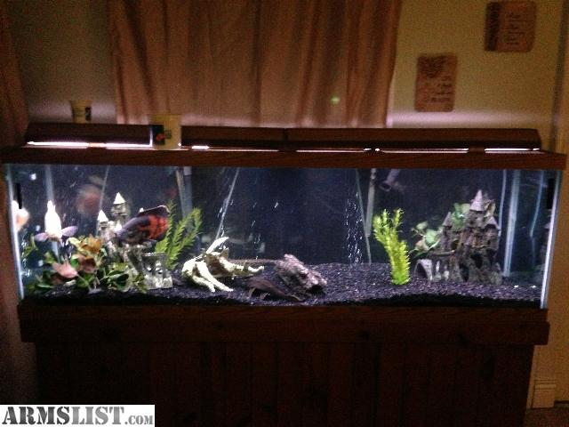 Armslist for sale 125 gallon fish tank for Decor international middletown oh