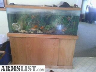 Armslist for sale trade 55 gallon fish tank and stand for 55 gallon fish tank stand for sale