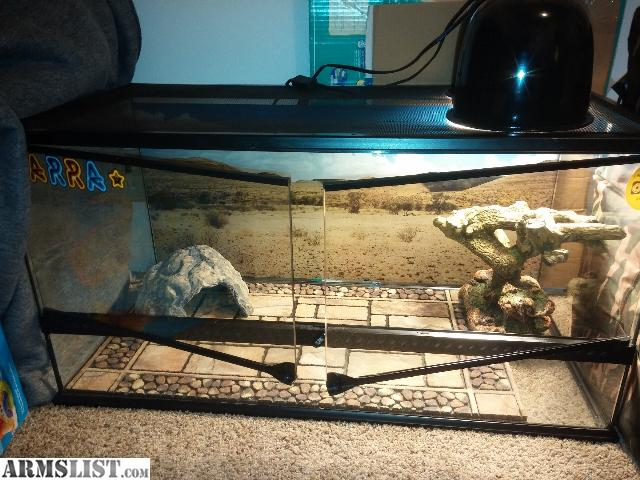 Armslist For Sale Exo Terra Reptile Terrarium 40 Gallon